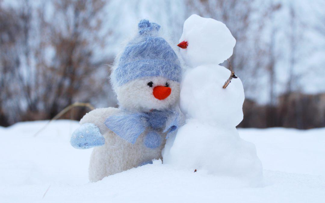 Zaterdag 8 december   PUTTEKE WINTER IN DE SCHORRE